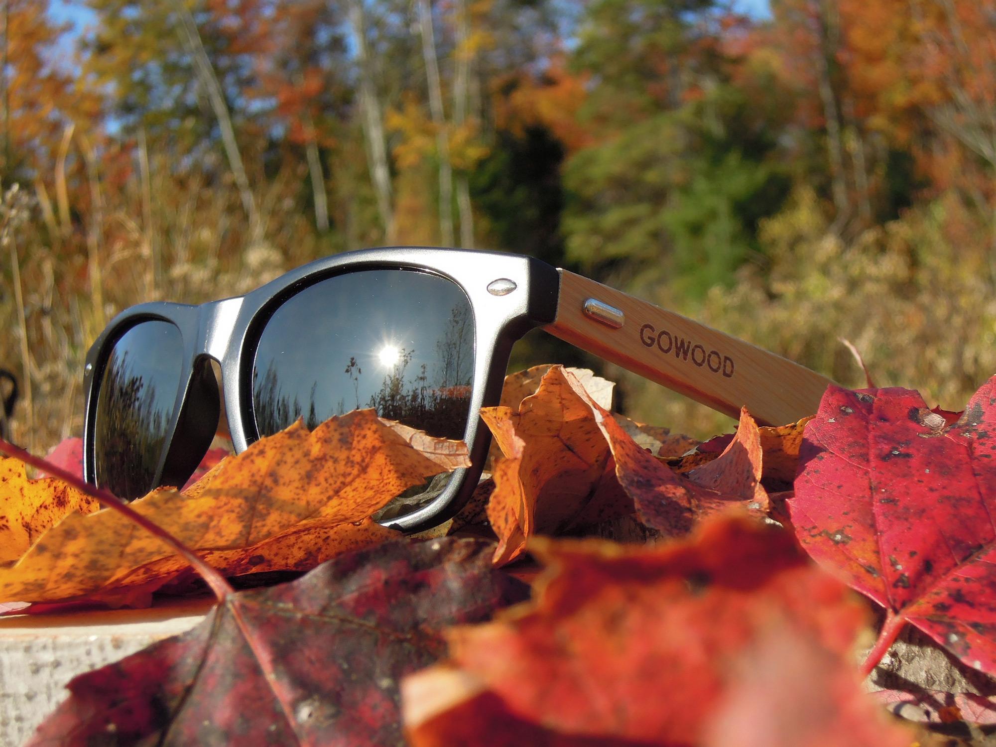 Wayfarer sunglasses Los Angeles nature