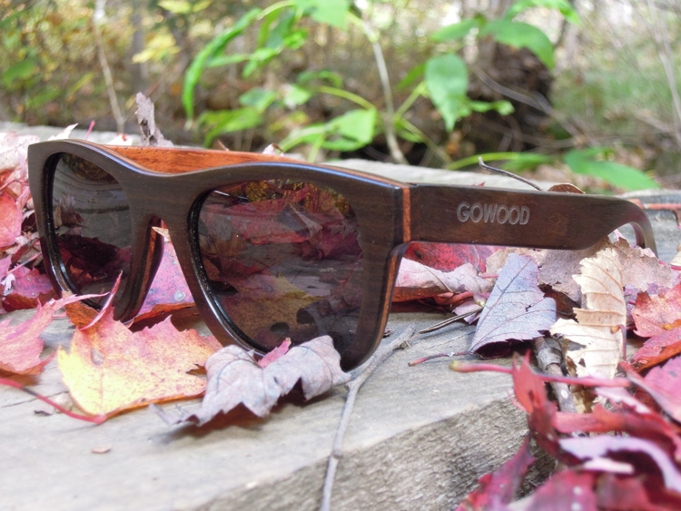 wood sunglasses wayfarer newyork2 pic1