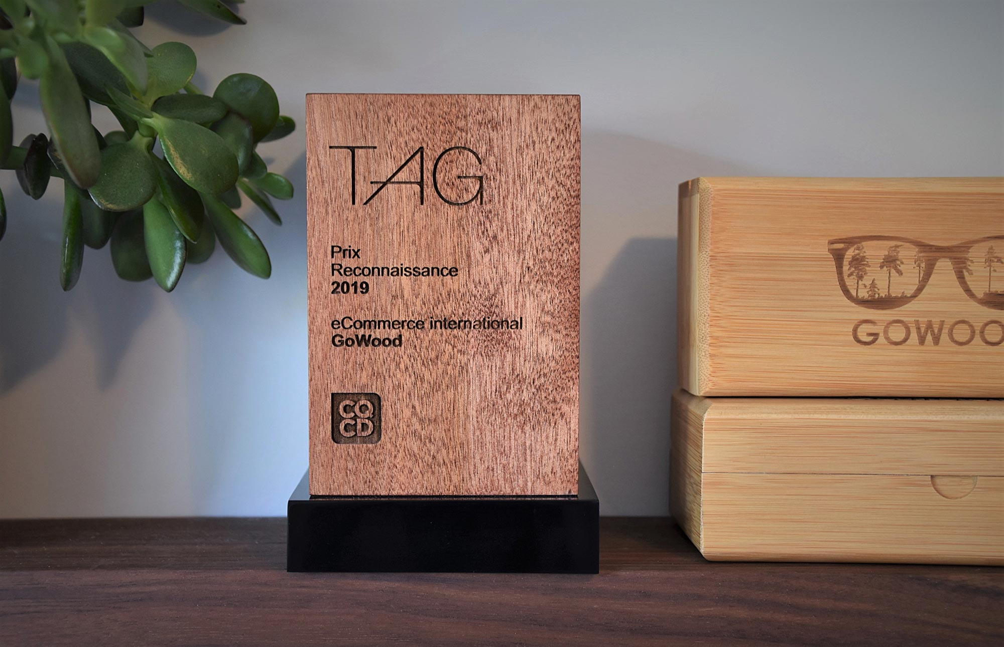 GoWood receives Recognition Award